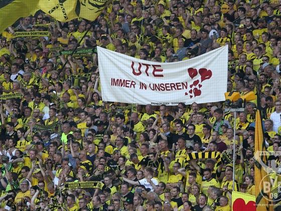 Das Banner für Ute